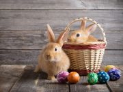 Frohe Ostern   4