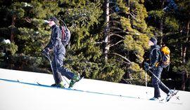 Skitour am Mieminger Plateau, Tirol