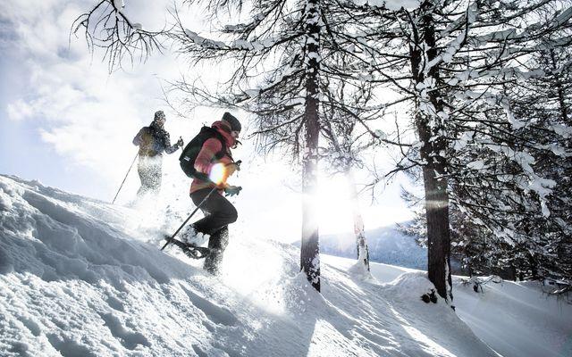 Winter-Festival Woche vom 26.1. - 2.2.2020 2/8