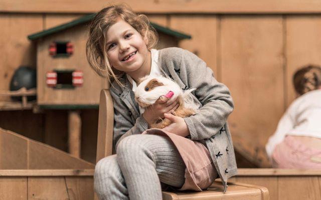 Kinderwelt - Familienurlaub genießen in Ebner´s Waldhof am See