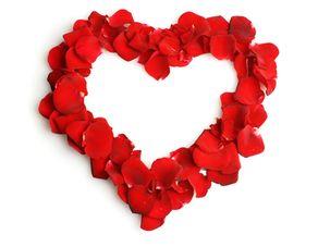 Liebesbotschaft mit Rosenblätter