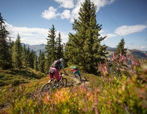 Kleines Bikepaket - Die kleine Berg- und Talfahrt
