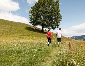 Fitness time in Forsthofgut