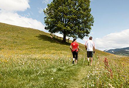 Tijd voor fitness in Forsthofgut