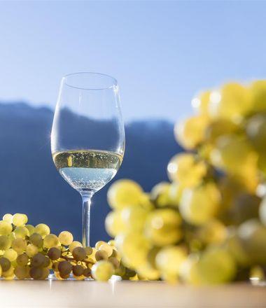 Angebot: Rieslingtage im Oktober & November - Familien- und Wellnesshotel Prokulus, Trentino-Südtirol