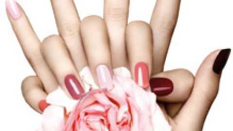 Pedicure or Manicure with nail polish or permanent polish