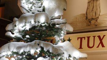 Mountain Christmas | 7 nights