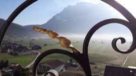 View 311 Zugspitze