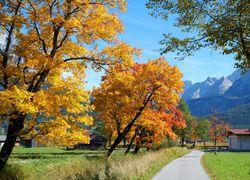 Offre automne- novembre