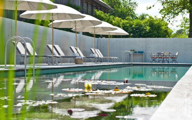 Biohotel Pausnhof: Naturschwimmbad