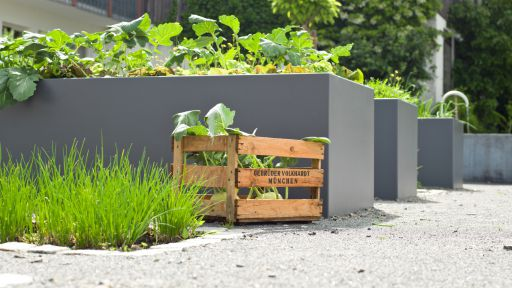 Biohotel Pausnhof: 100% Bio-Küche