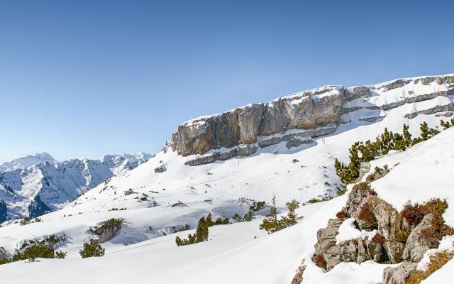 Biohotel Chesa Valisa: Berglandschaft