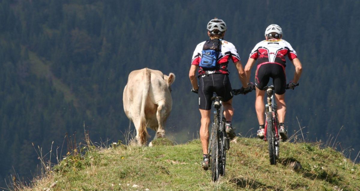 Berg und Bike    7 Übernachtungen   ab 18 Jahren