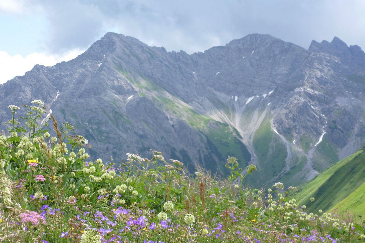 Alpine Power package