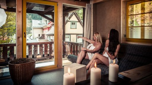 Schmilka Badehaus Sauna Wellness
