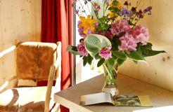 Helvetia Eco comfort room with balcony (5/5) - Bio- & Nationalpark Refugium Schmilka