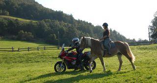 Reiten & Motorradfahren light