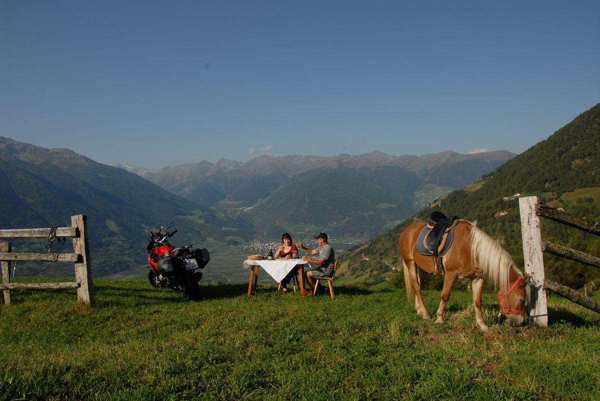 Horseback and motor riding