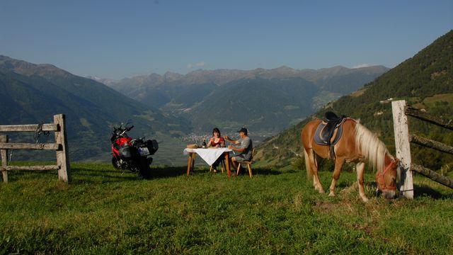 Horseback and motor riding