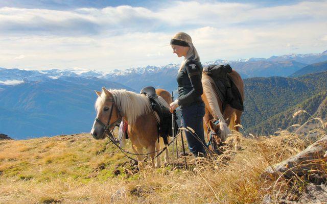 Landhotel Anna: Exklusives Wander- & Reitangebot