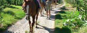 Escursioni a cavallo per un'ora