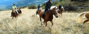 Gita a cavallo - mezza giornata