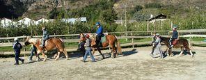 Lezione di equitazione per avanzati - bambini e adulti
