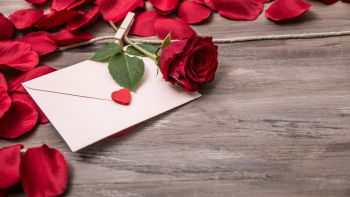 Zeit für Romantik - Zeit für Genuss