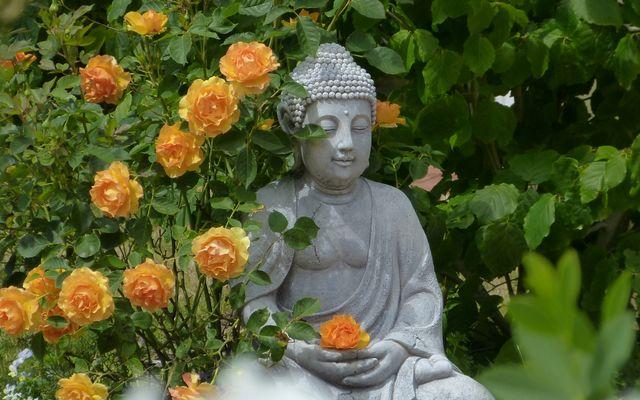Biohotel Ginkgo Mare: Buddha
