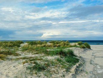 Biohotel Ginkgo Mare Ostsee Strand Urlaub