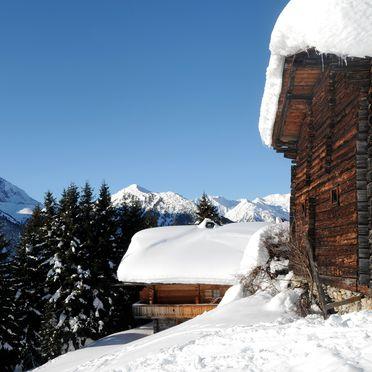 Winter, Brandstatt Alm, Finkenberg, Tirol, Tirol, Österreich