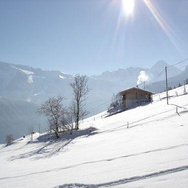Ferienhütte Elisabeth, Frontansicht4