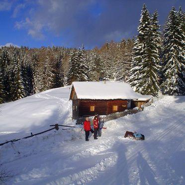 Frontansicht, Reh's Wiesen Hütte in Lüsen/Brixen, Südtirol, Trentino-Südtirol, Italien