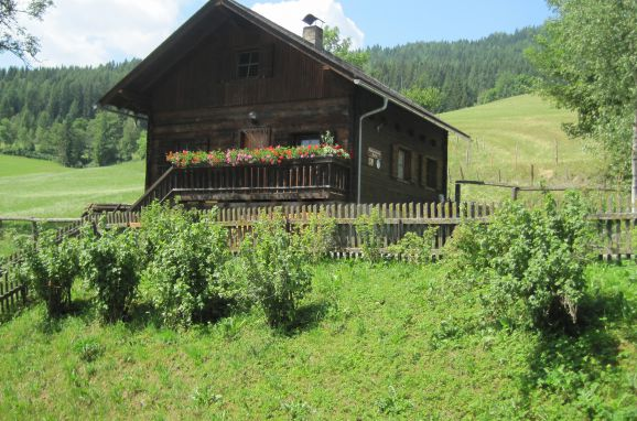 Summer, Dorferhütte, Oberwölz, Steiermark, Styria , Austria