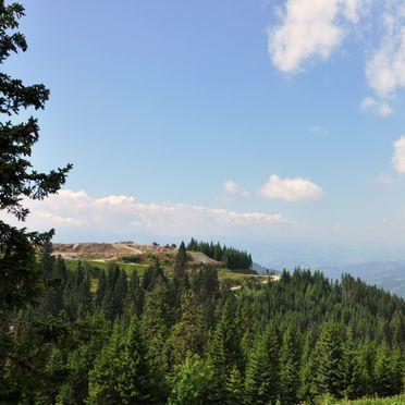 Aussicht, Almrausch-Feriendorf Koralpe, St. Stefan, Kärnten, Kärnten, Österreich