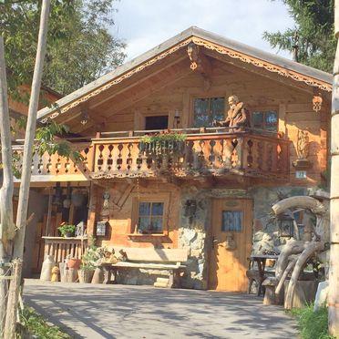 Summer, Hammer-Hütte, St. Veit , Salzburg, Salzburg, Austria