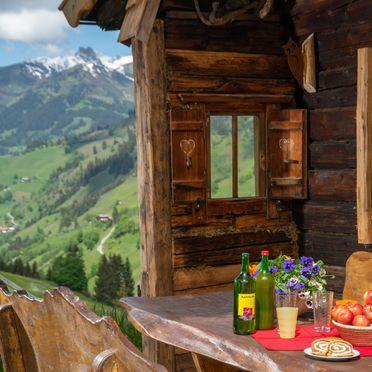 Sommer, Hungarhub Hütte in Großarl, Salzburg, Salzburg, Österreich