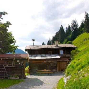 Sommer, Grasreithütte, Großarl, Salzburg, Salzburg, Österreich