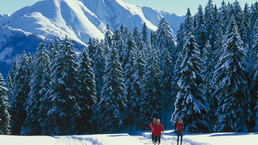 Das Ski-Paradies für Gross und Klein