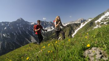 Bergfrühling im Tannheimer Tal