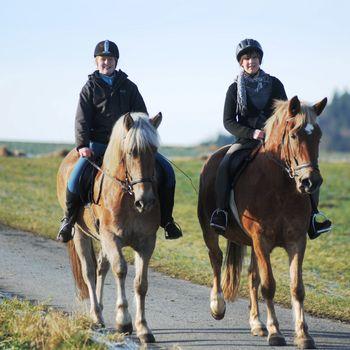 Kennismakingsdagen voor paardenvrienden in Hotel Freund