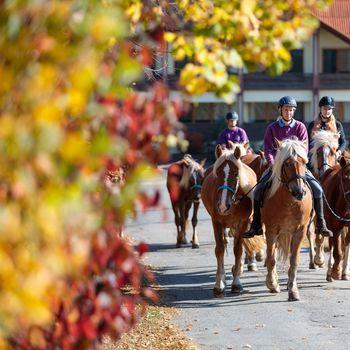 FREUNDs Reiter Wochenende