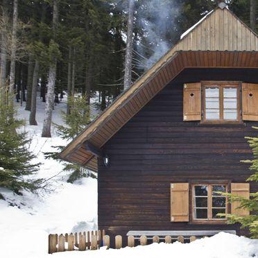 Frontansicht, Guidos Panoramahütte in Vordernberg, Steiermark, Steiermark, Österreich