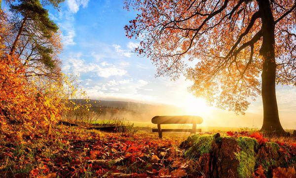 Lust auf Herbst | 2017
