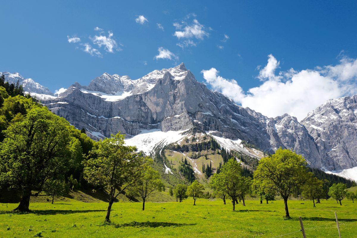 Bergfrühling