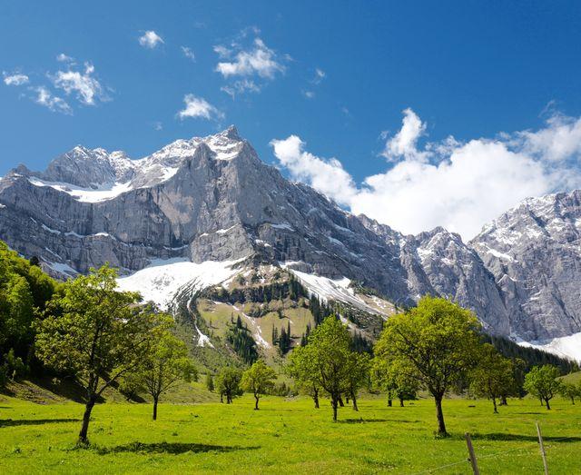 Le printemps à la montagne