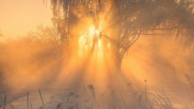 Sonnenskilauf