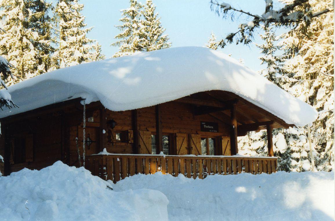 Alpen-Chalets Haus Bernadette, Winter