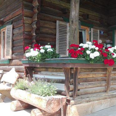 summer, Neukam Hütte, Bischofshofen, Salzburg, Salzburg, Austria