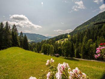 Hütte Höhenegg - Salzburg - Österreich